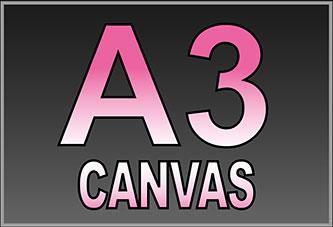 A3 Canvas