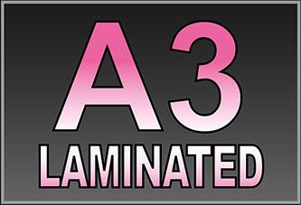 A3 Laminated Prints